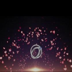 AM-05 Wedding rings spark