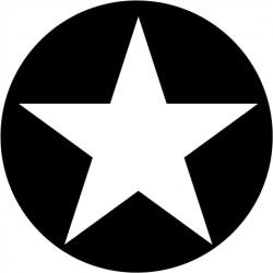 A100 Single Star