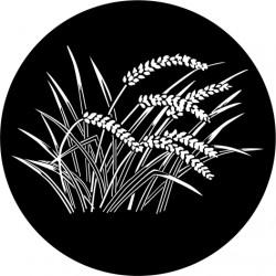 F101 Japanese Grass(Glass)